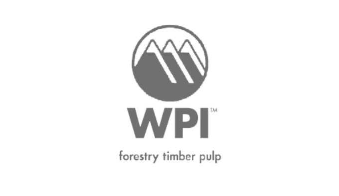 Winstone Pulp International